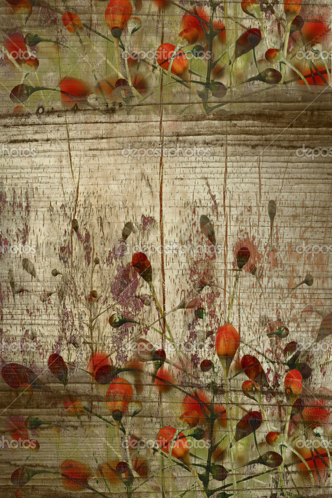 Red buds on grunge wood background