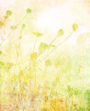 Soft summer meadow background