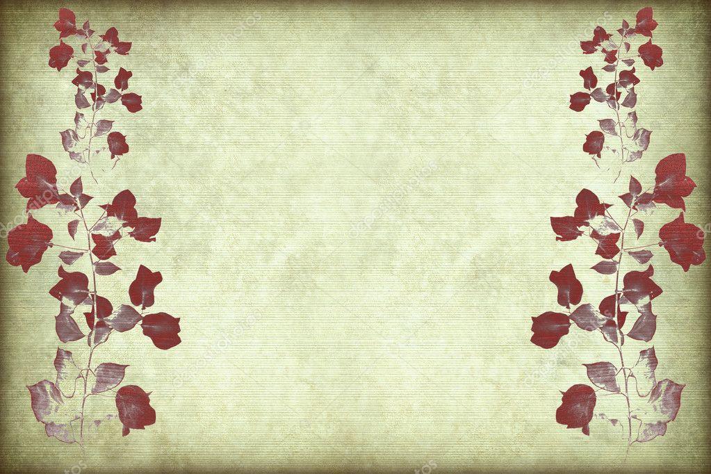 Rama de buganvillas rojas con marco fotos de stock - Fotos de buganvillas ...