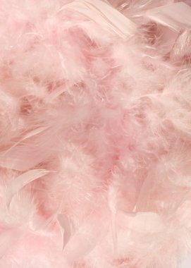 Baby pink fluffy feather background with text space stock vector