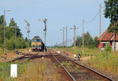 Sommerlandschaft mit dem Güterzug