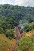 nákladní motorový vlak