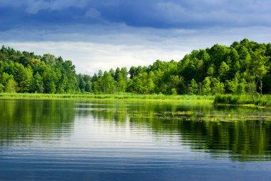 """Картина, постер, плакат, фотообои """"озеро и лес."""", артикул 1846095"""
