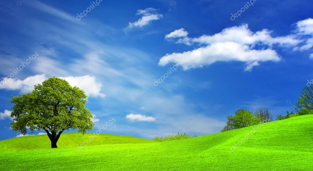 Green landscape and cloudy sky