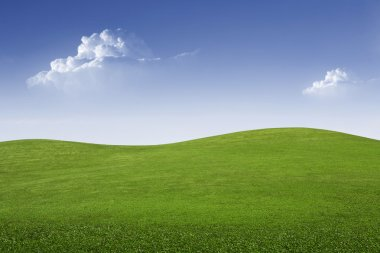 Panoramic view of nice green hill on blue sky background stock vector