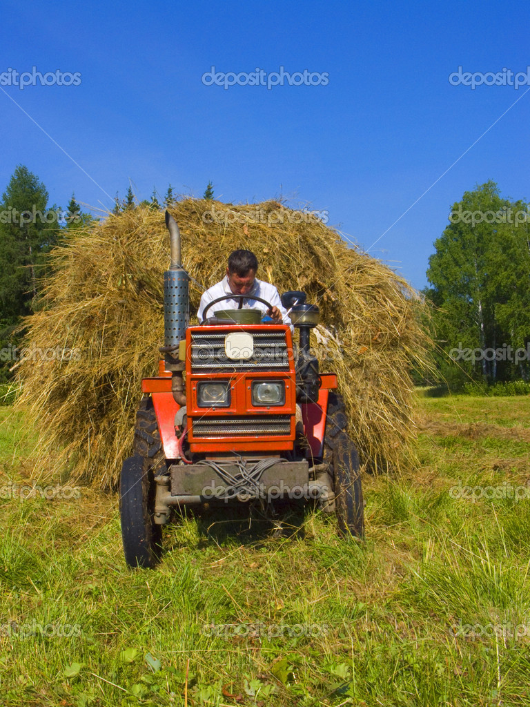 Haymaking in Siberia 4