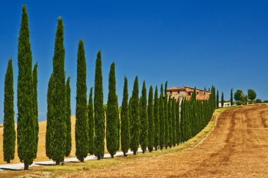 Tuscany landscape view, Italy stock vector