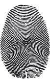 Fingerabdruck-vektor