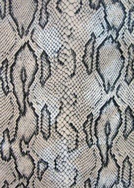 Snake texture concept, dangerous macro.