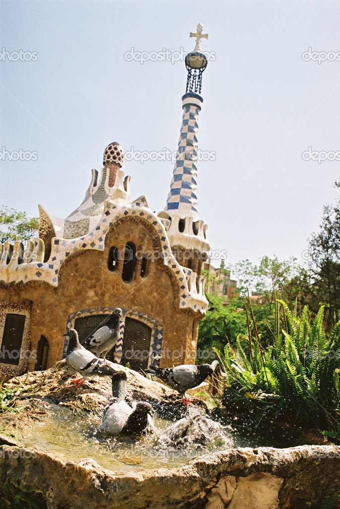 Pigeon washing in Barcelona - Parc Guell