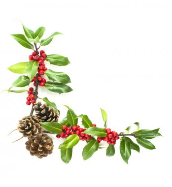 Holly and red berries corner motif