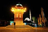Fényképek sarajevo, Bosznia-történelmi forrás