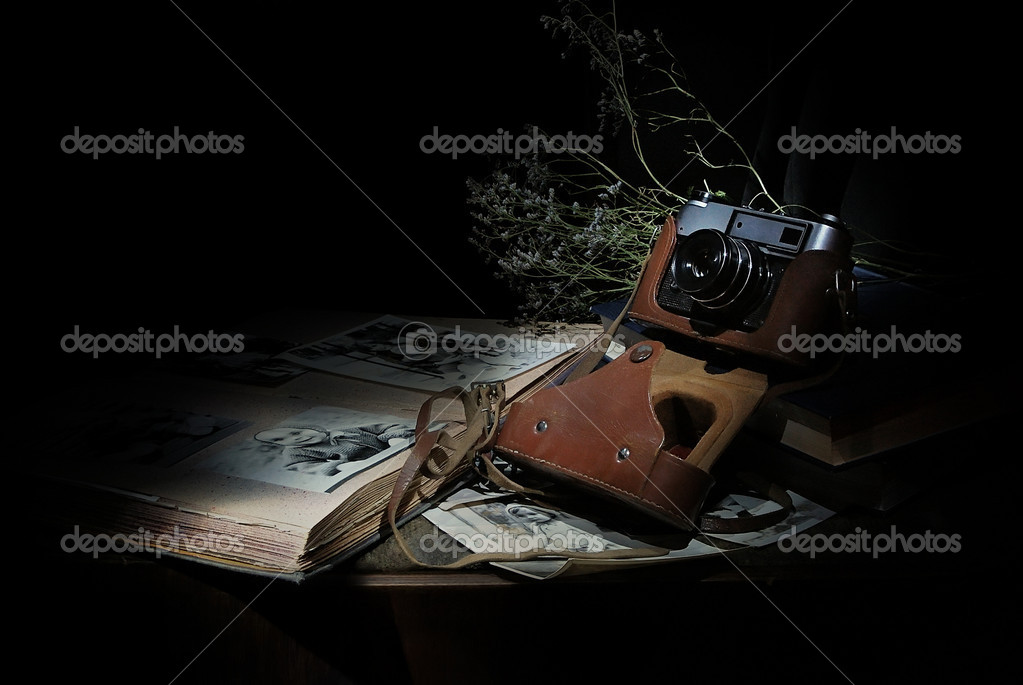 Ancient picture album and the camera