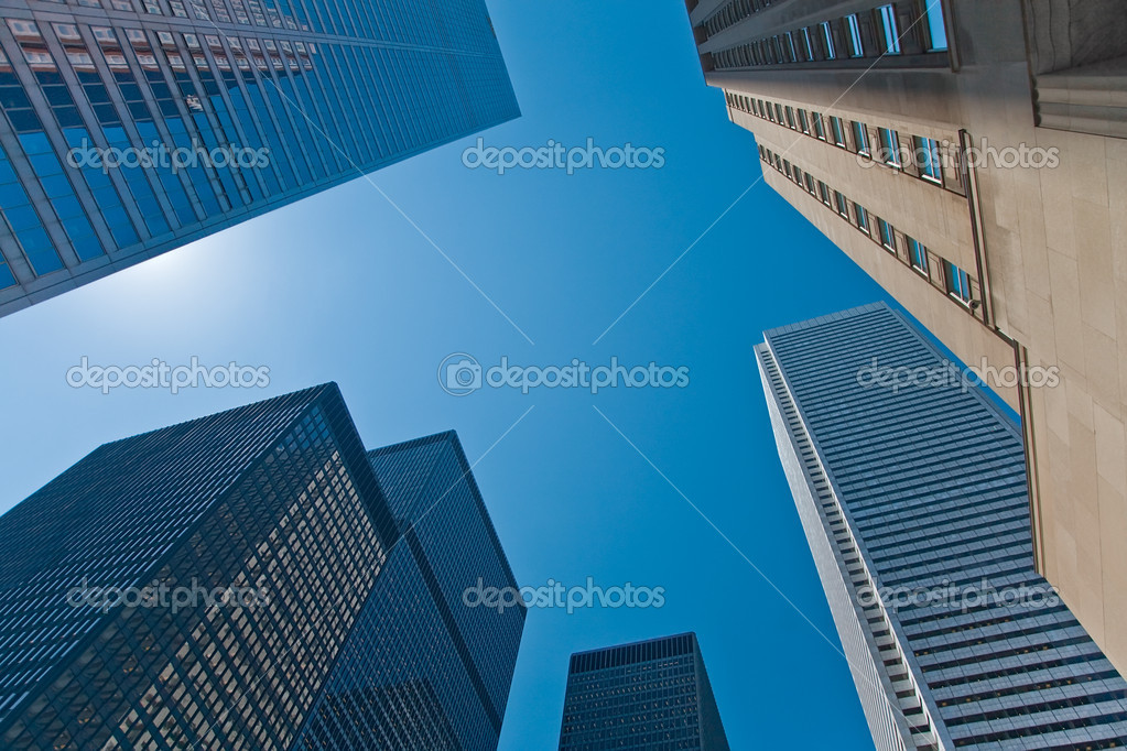 Looking Up at the Skyscrapers