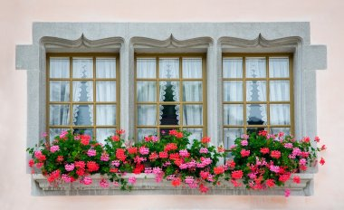 Old European Windows