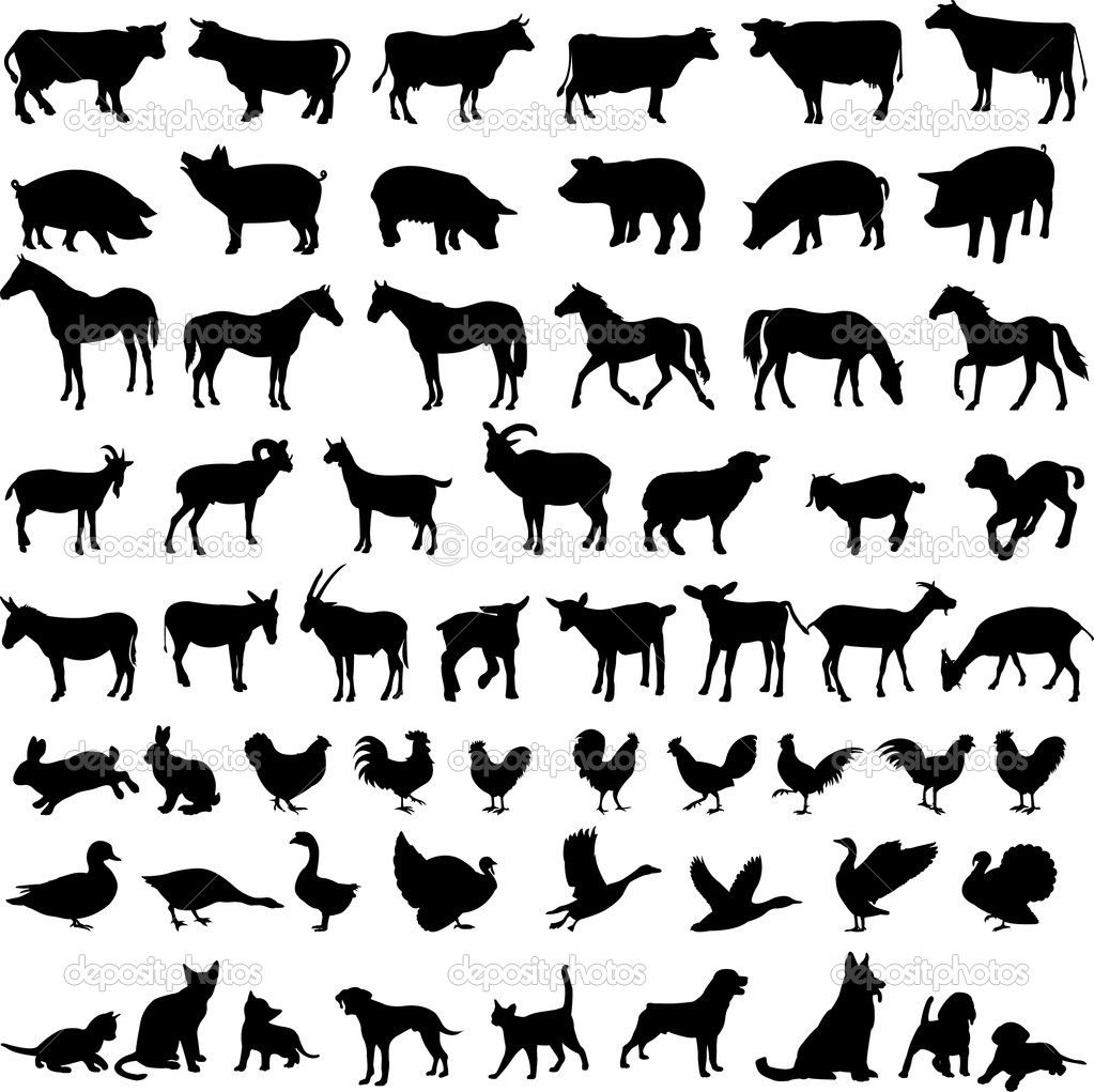 Big collection of farm animals