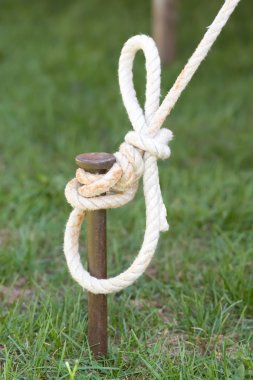 Tent Stake with Rope