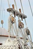 ročník plachetnice detail