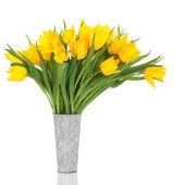 žlutý Tulipán květy