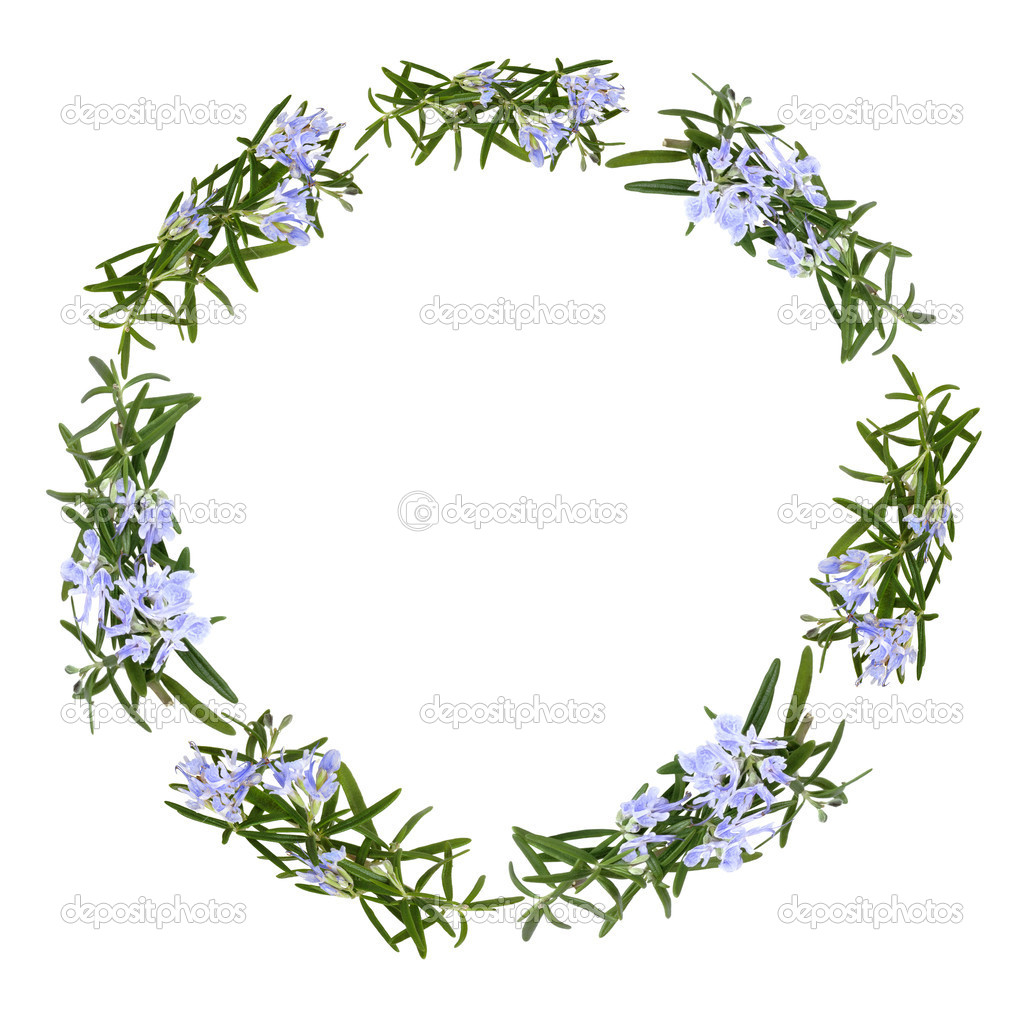 Rosemary Herb Flower Garland