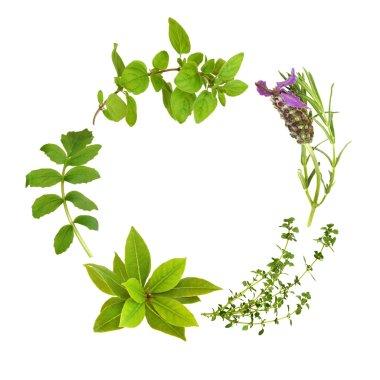 Herb Leaf Garland