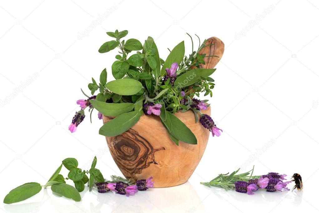 Lavendel Kräuter Blume Schönheit Stockfoto Marilyna 2057906