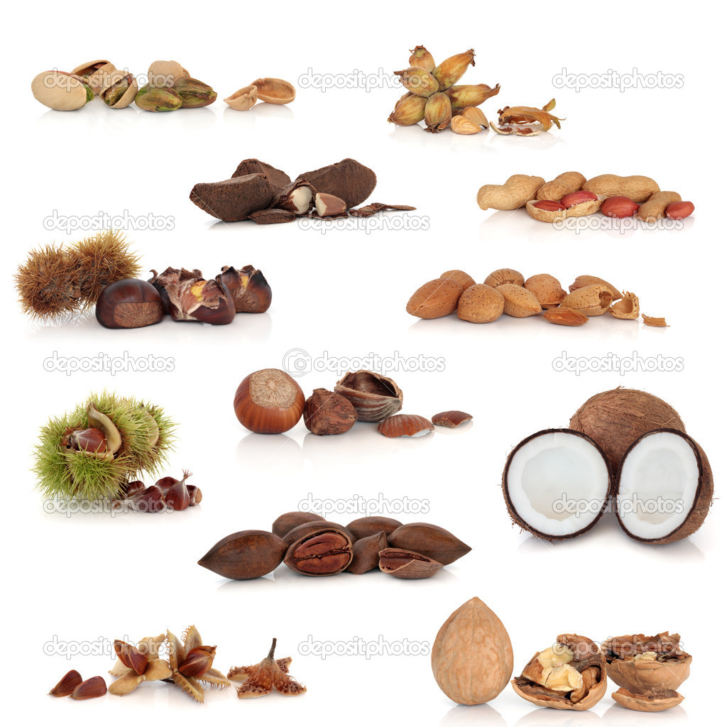 Nut Collection