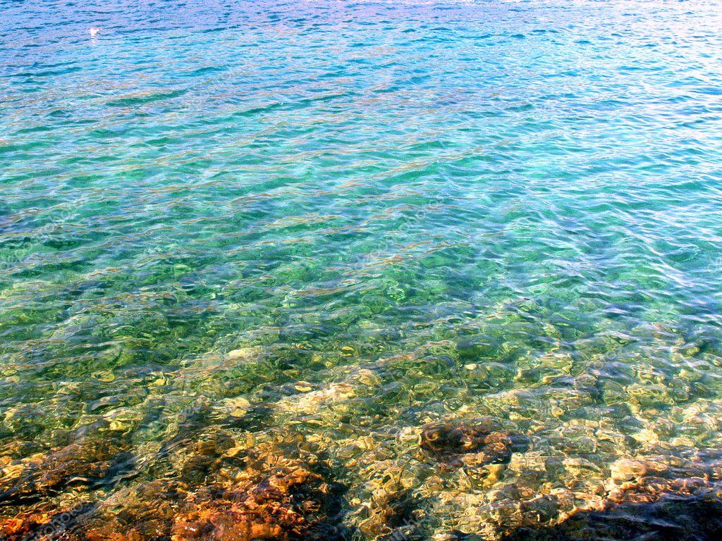 Adriatic sea — Stock Photo © thoron77 #1977090 Pictures Gobiidae Adriatic Sea