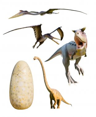 Four most popular dinosaurs - CP