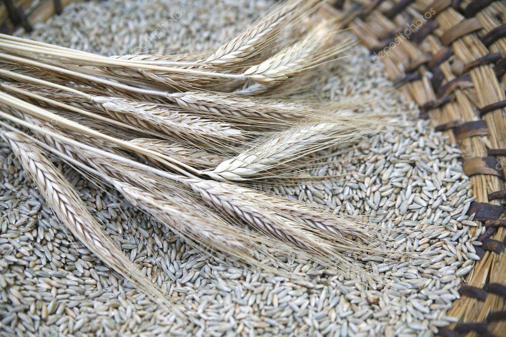 Ear of the wheat on wicker basket