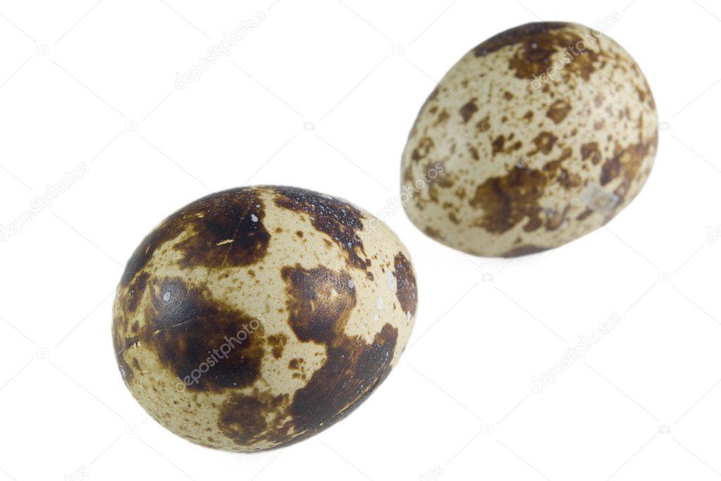 Pair of quail eggs