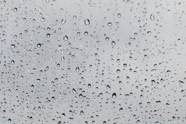 Rain drops texture