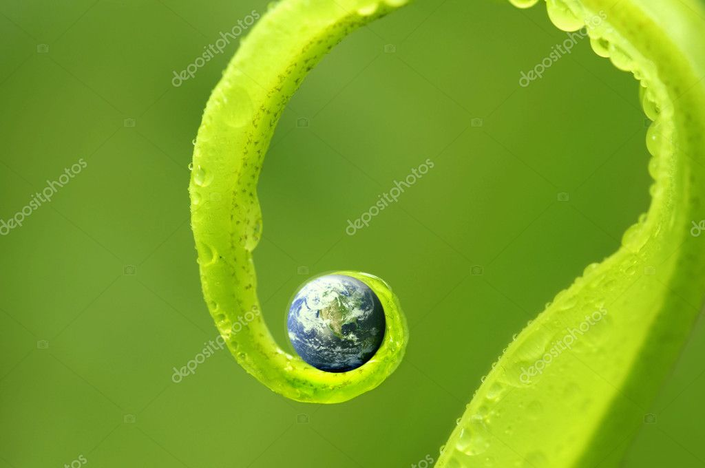 Concept photo of earth on green nature