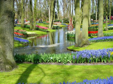 Scenic garden with spring flowers