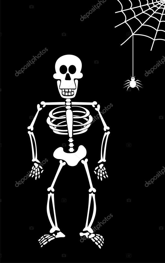 Halloween Skeleton on Black Background.