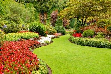 Lush garden in spring