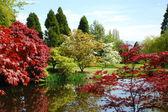 jarní zahradní jezírka