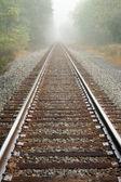 Fotografie Foggy Railroad Tracks