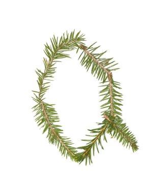 Spruce twigs 'Q'