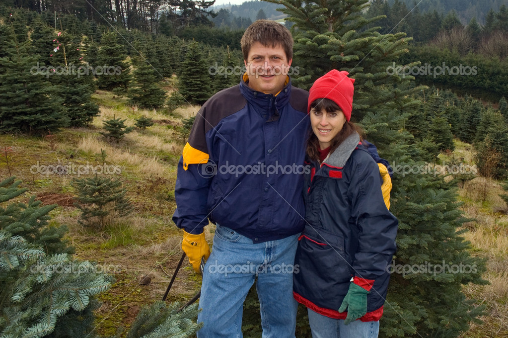 Couple searching for Christmas Tree