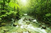 horský potok