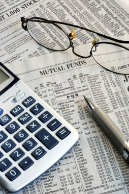Performance of the mutual fund