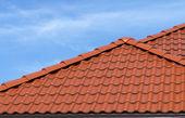 Fotografie střecha