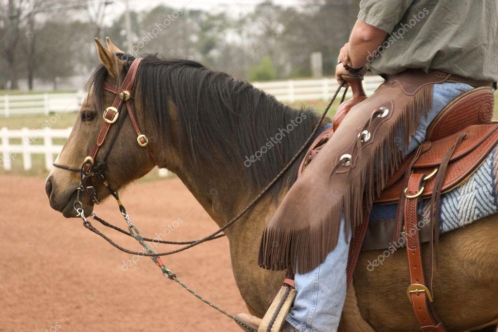 caballo de trabajo — Fotos de Stock © sherryk #2283418