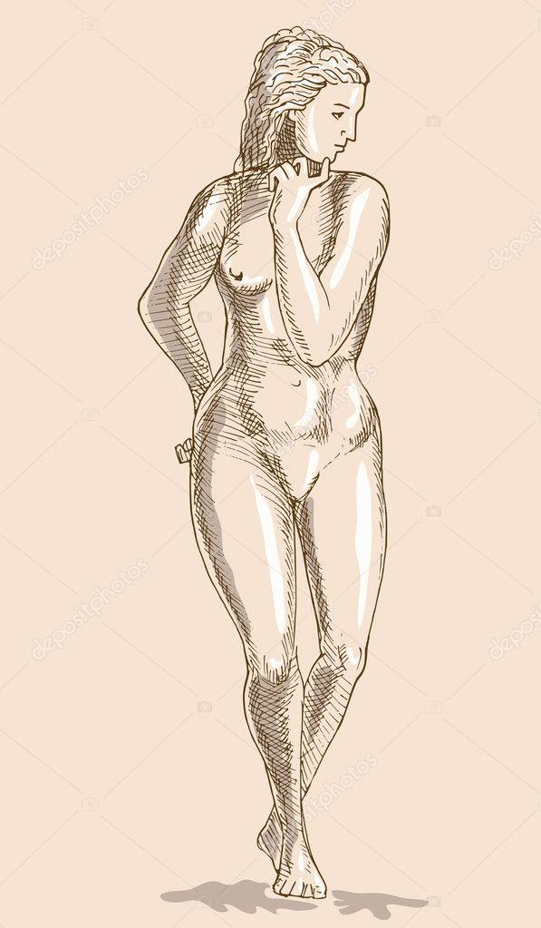 Drawing Female Human Anatomy Figure Stock Photo Patrimonio 2064737
