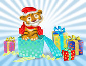 Fotografie A tiger cub sits near boxes with gifts