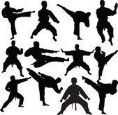 Fényképek Karate fighters gyűjtemény