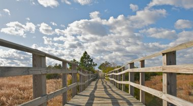 Wooden bridge leading to the beach.
