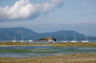 Boats off-shore