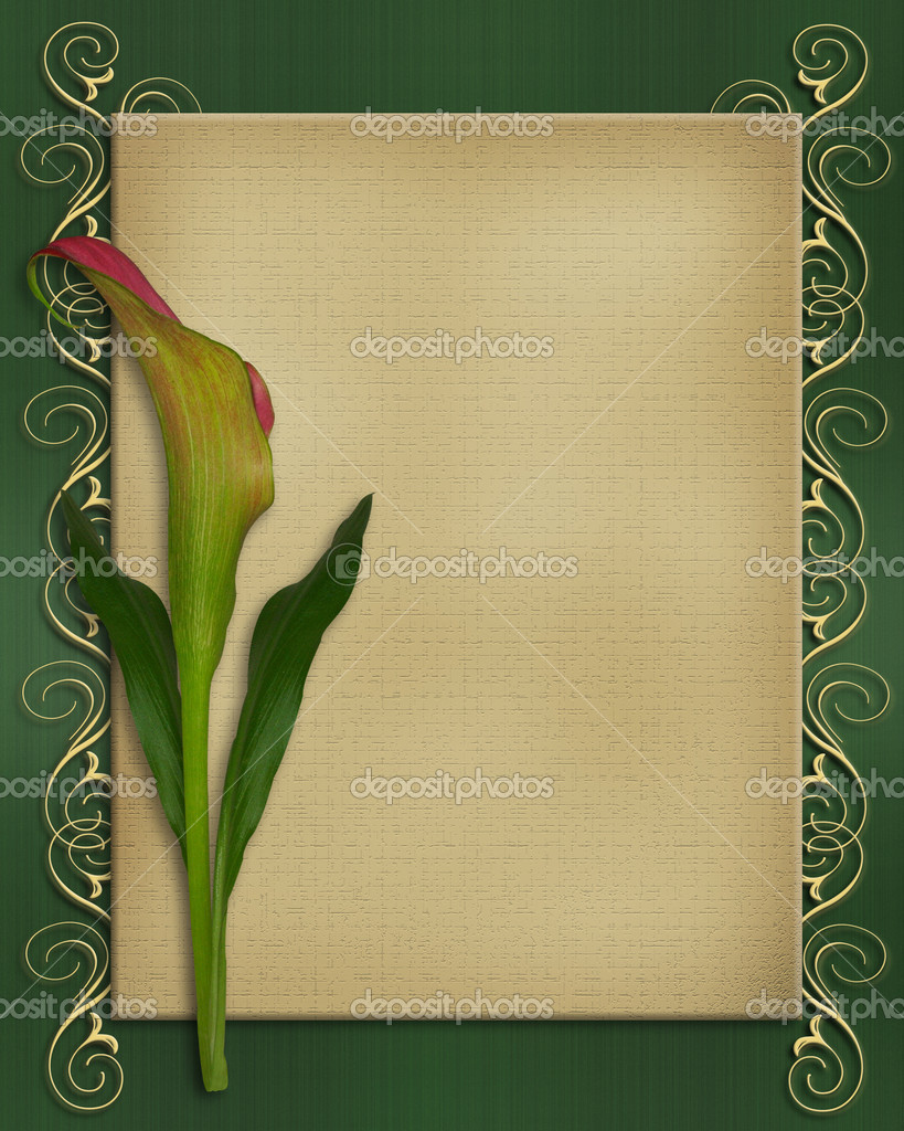 Calla Lily Invitation card template — Stock Photo ...